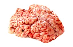 Picture of BEEF BRAIN