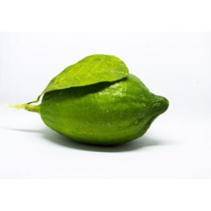 Picture of LIME