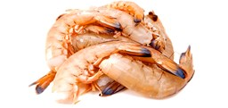 Picture of BROWN PRAWN