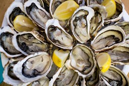 Picture of OYSTER [30-45PCS/KG]