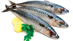 Picture of AILA FISH [7-10 PCS/KG]